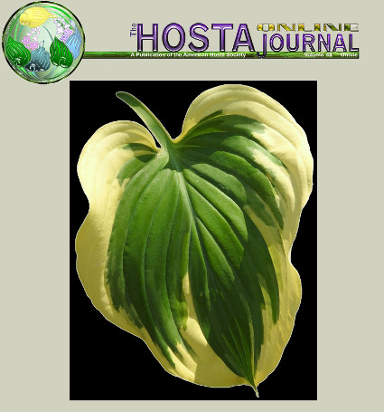 American Hosta Society (AHS)